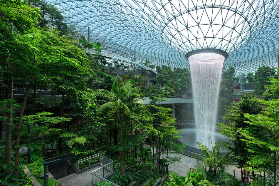 Il ritorno della natura in città a Singapore.