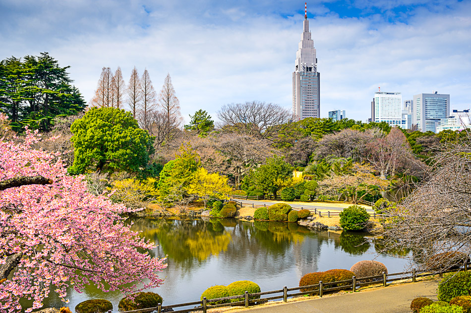 Natura e spiritualità per una Tokyo zen.